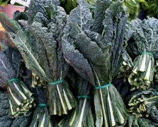 Superfood Spotlight: Kale