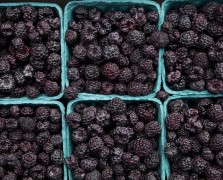 Superfood Spotlight: Blackberries