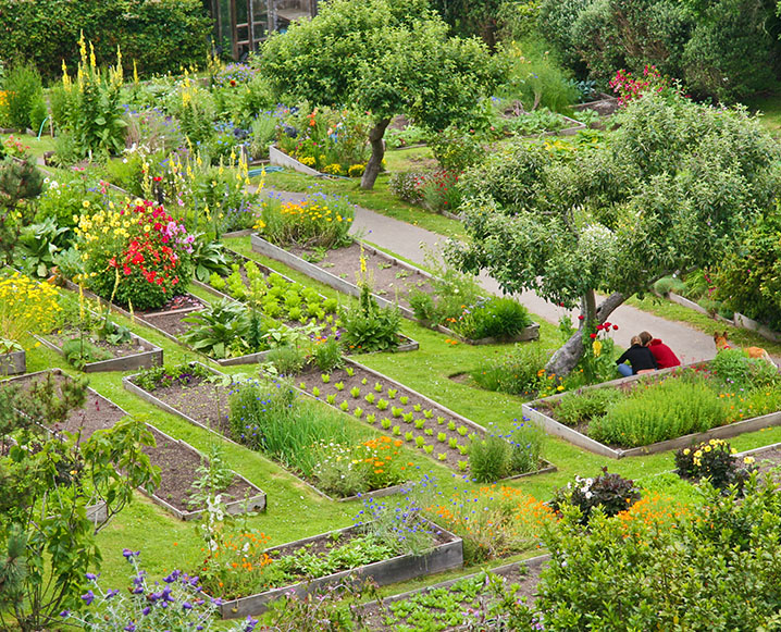 Organic Garden Tour: An Eco-Resort On the Mendocino Coast
