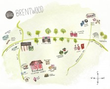 TCM Neighborhood Guide: Brentwood