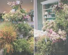anthropologie workshop botany floral design