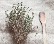 oil of oregano superfood benefits