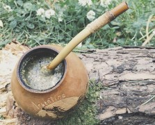 yerba mate superfood spotlight