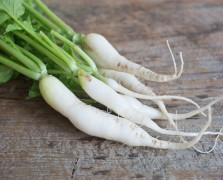 Superfood Spotlight: Daikon Radish