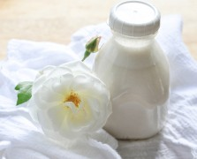 oat milk oat mylk free and native recipe