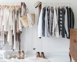 closet detox the little foxes