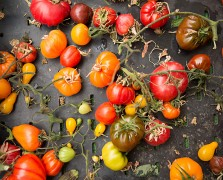 Summer Market Bliss: 5 Reasons To Hit The Farmer's Market Right Now