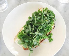 Long Live The Toast: Salt Air's Snap Pea Ricotta Toast Recipe