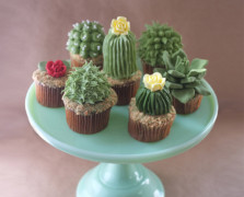 Meet The Blogger Behind These Succulent Cupcakes