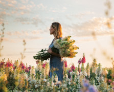 Mornings With Erin Benzakein at Floret Farms