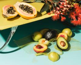 Future Classics photography series by Julia Stotz