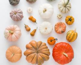 This Pumpkin Tiramisu Is Like Halloween Candy For Foodies